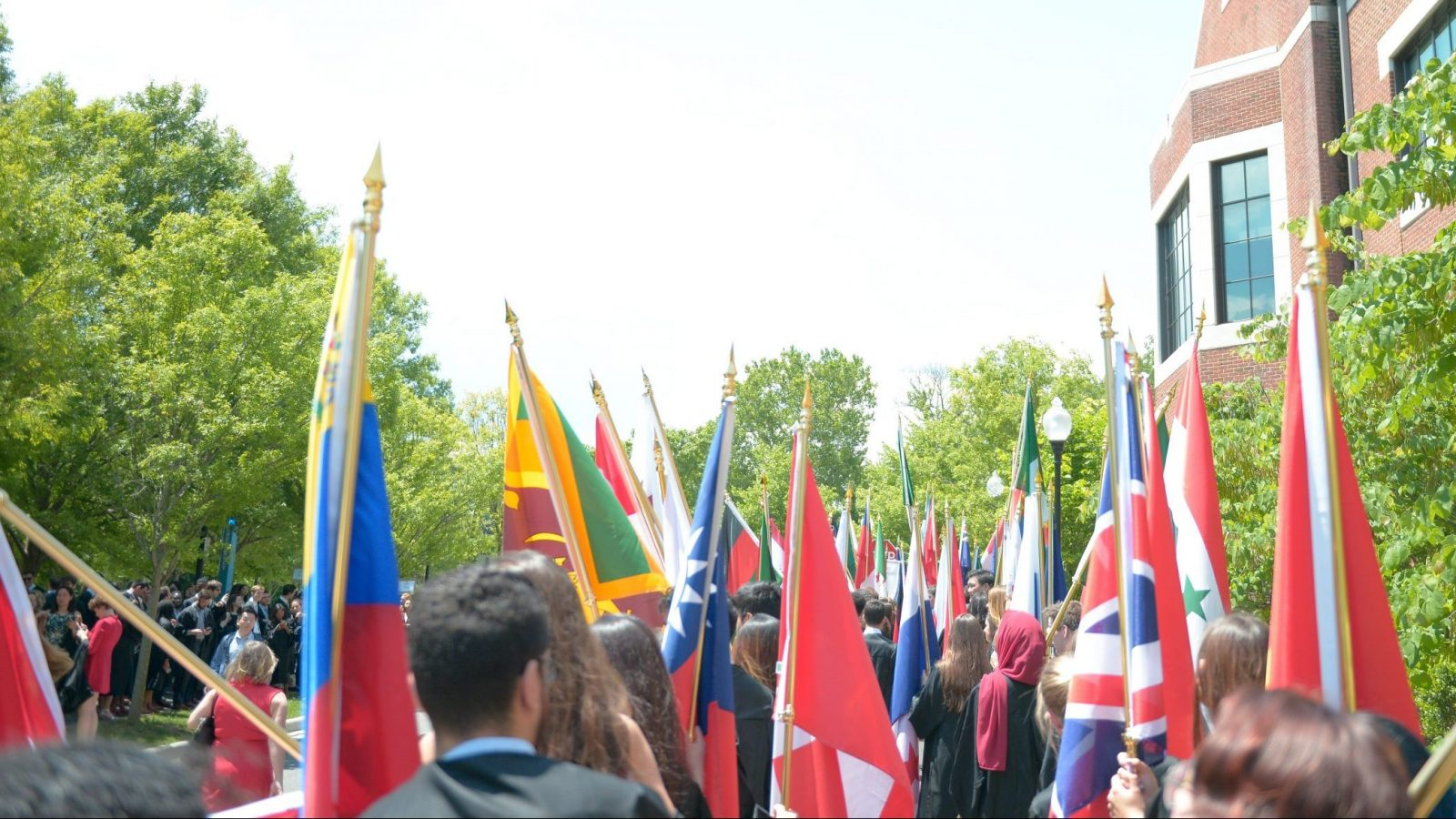 An assortment of flags from various countries.