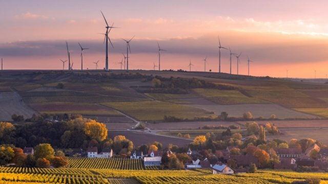 Environment and Sustainability Management Program